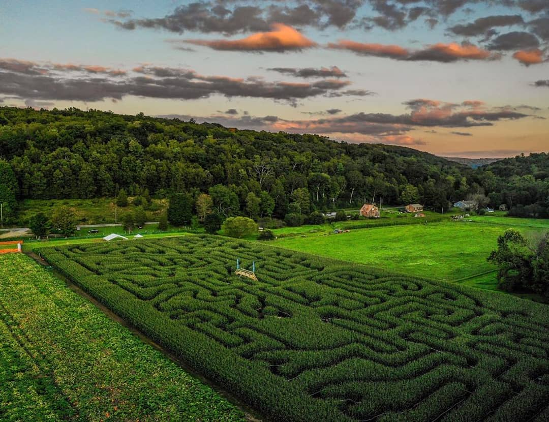 2019 Dino Maze - The Farm Woodbury CT.jpg