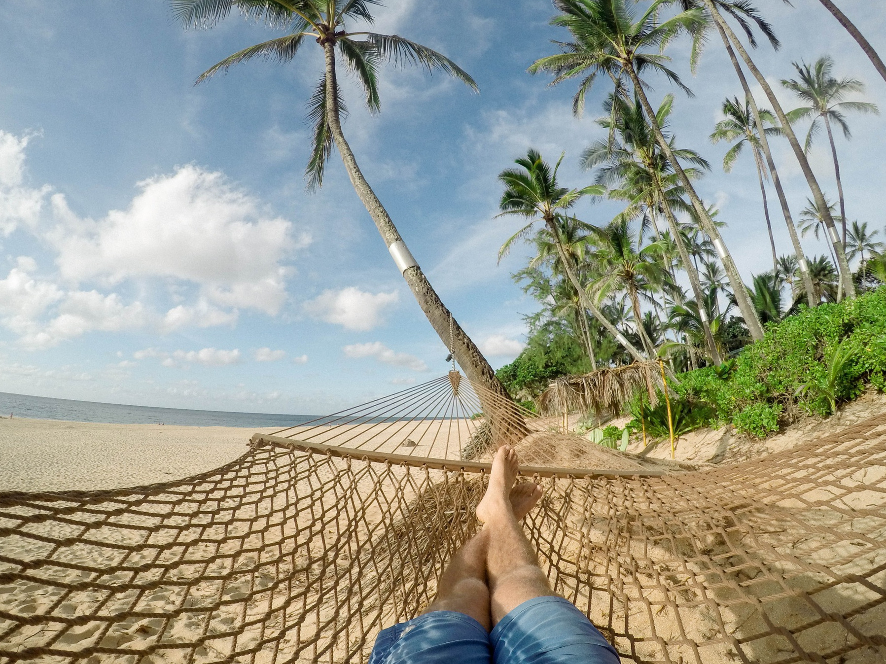 - To the hammock vision: add noticing your soft breath, any feelings that arise, a light breeze on your skin and your hair blowing in the same direction as the breeze.