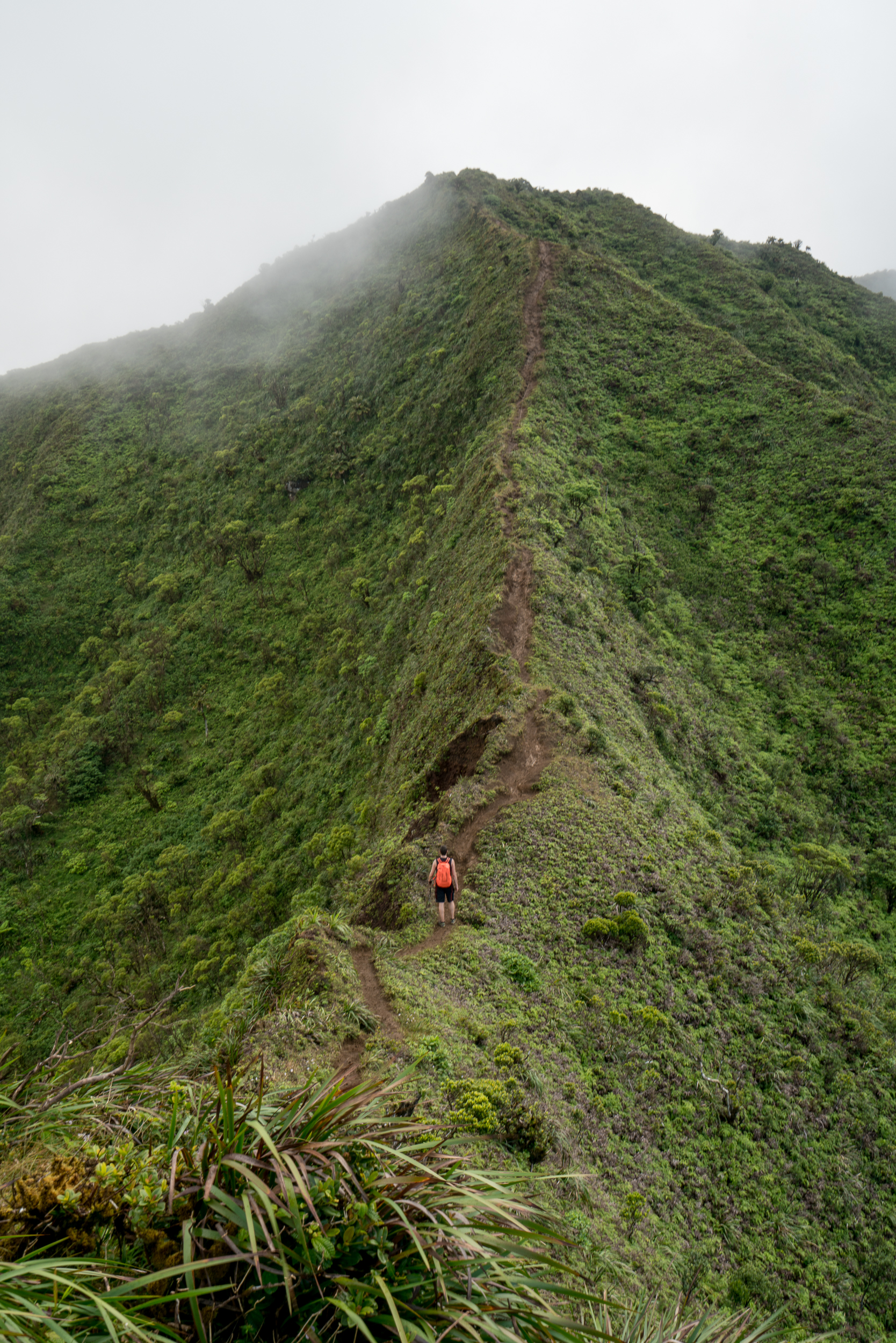 Moanalua Middle Ridge, Oahu