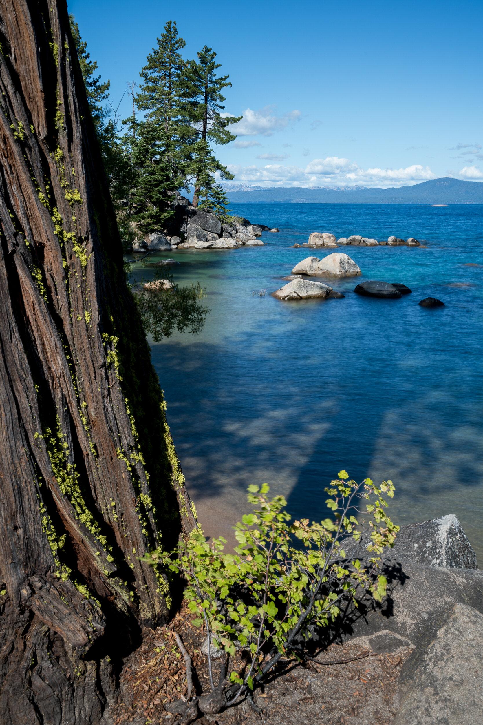 Skunk Harbor, Lake Tahoe