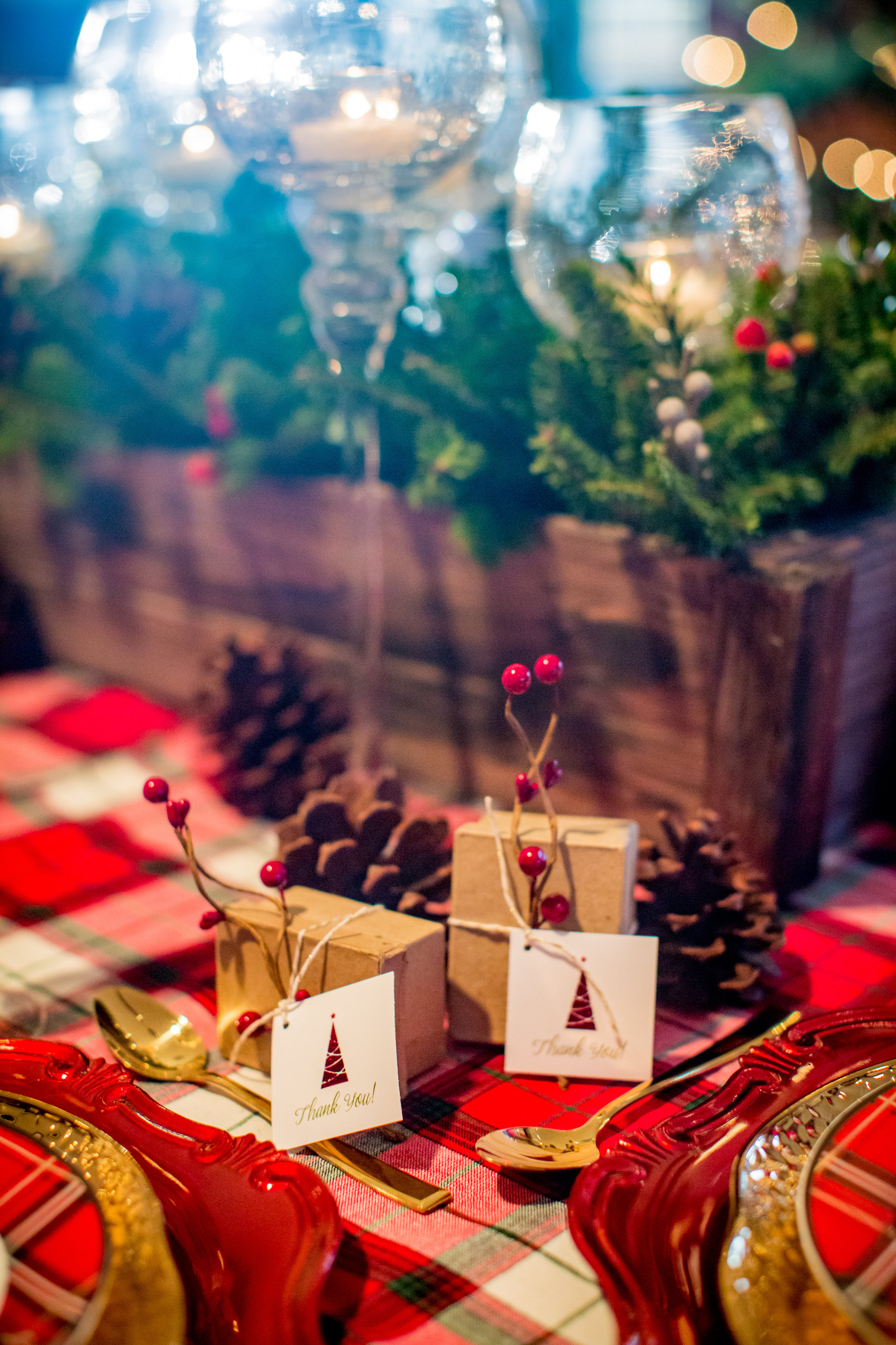 Chula Vista Christmas Wedding by Peer Canvas Photography & Films - 0085.jpg