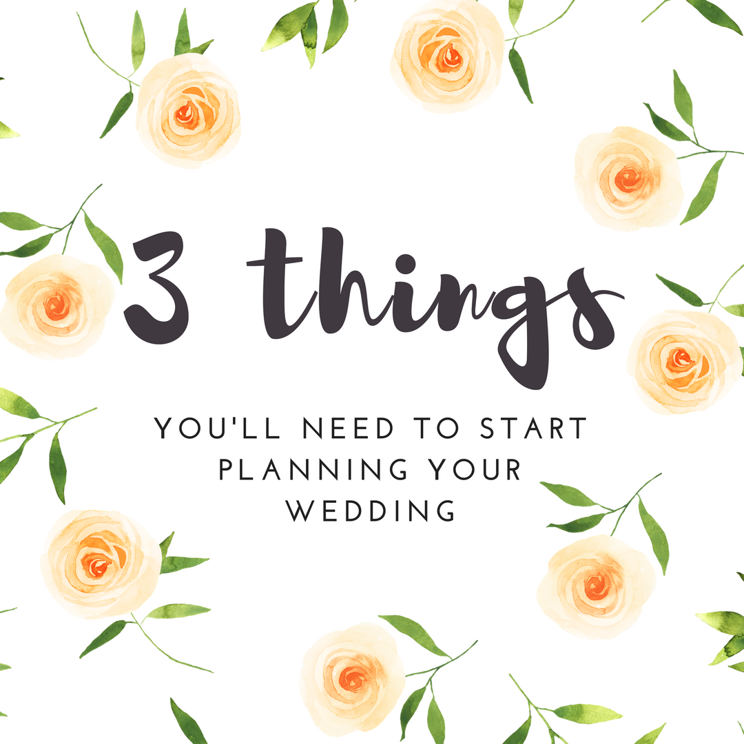 How to plan you own wedding, 3 things you need to plan your wedding. Wisconsin Dells weddings, madison wisconsin wedding planner