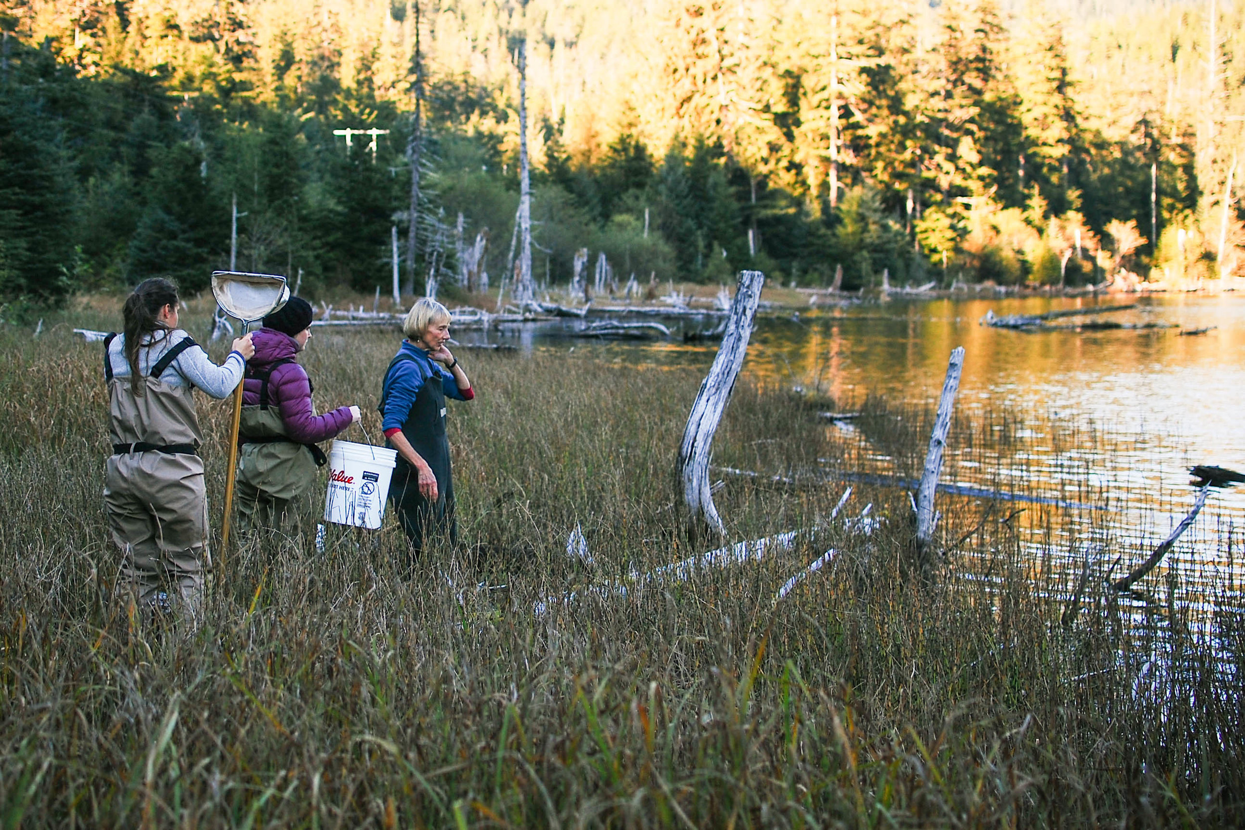 Educators prepare to gather samples for an in-class demonstration in southeast Alaska