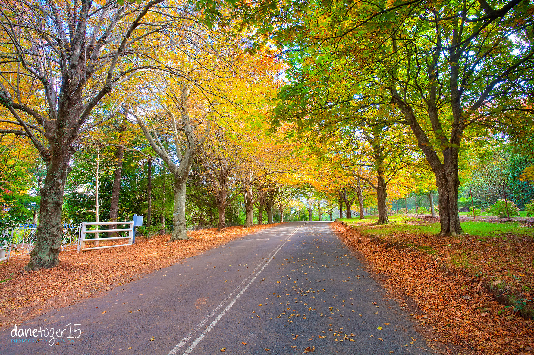 Mount Wilson, NSW