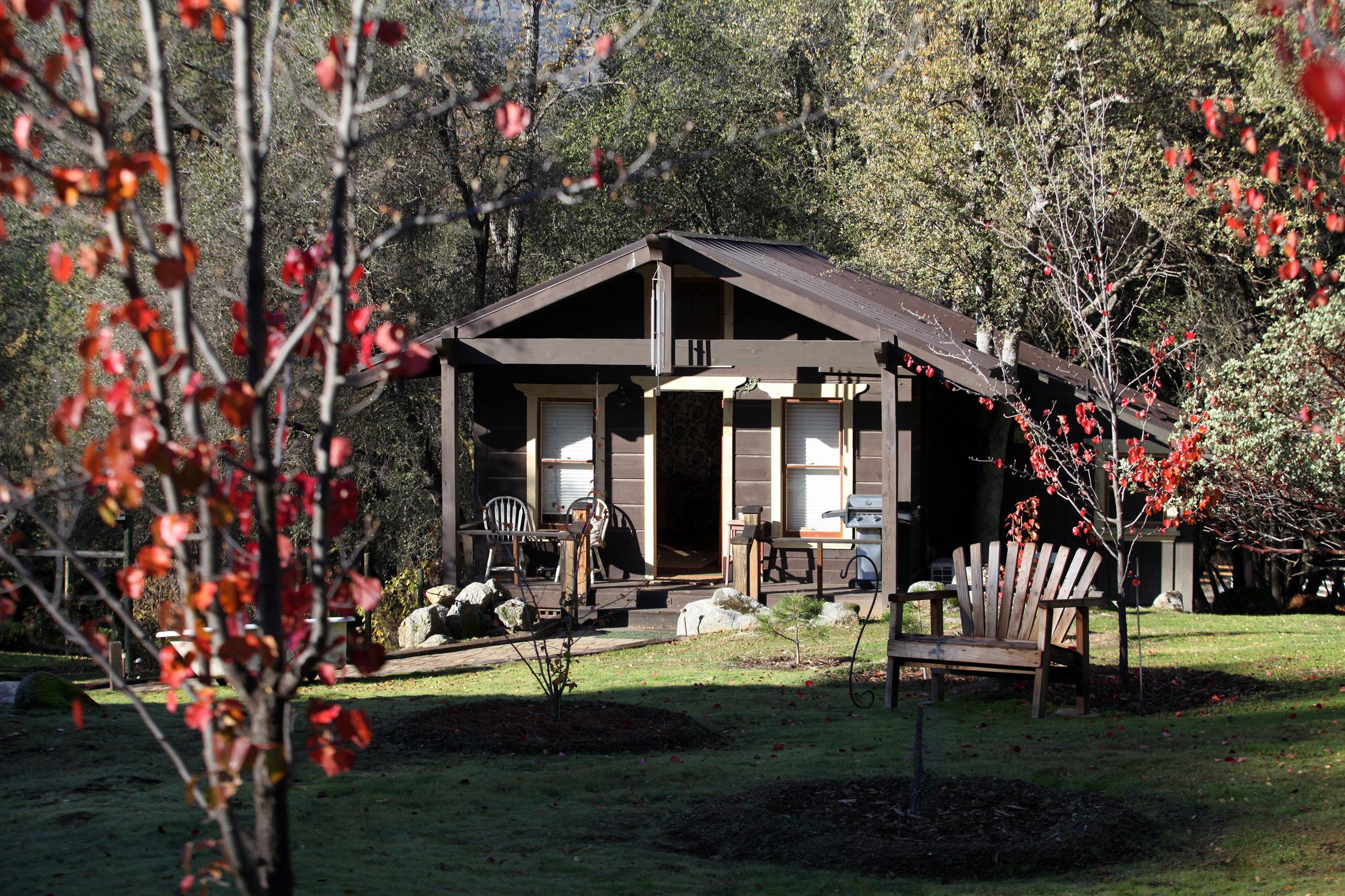 Cabin in December.jpg