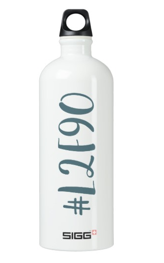 SIGG Traveler 1.0L Water Bottle