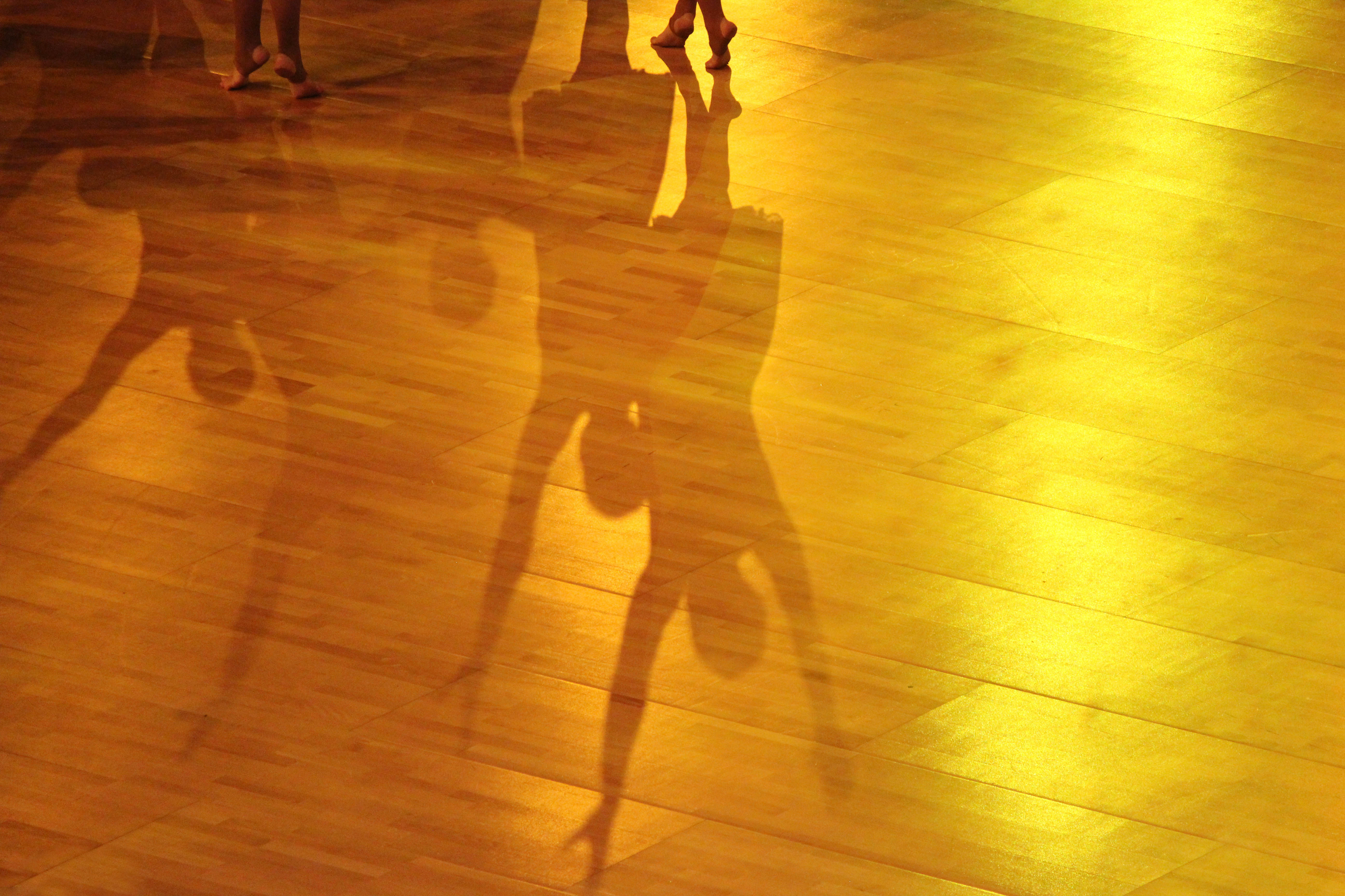 Gymnast Shadows