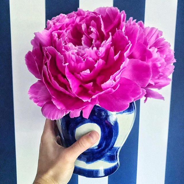 Flowers for your Friday via the delightful @dianarosespier (& because fuchsia and navy is always the best idea)! Wishing you all a wonderful weekend! #weekendvibes #brushstrokegingerjar #blueandwhiteforever
