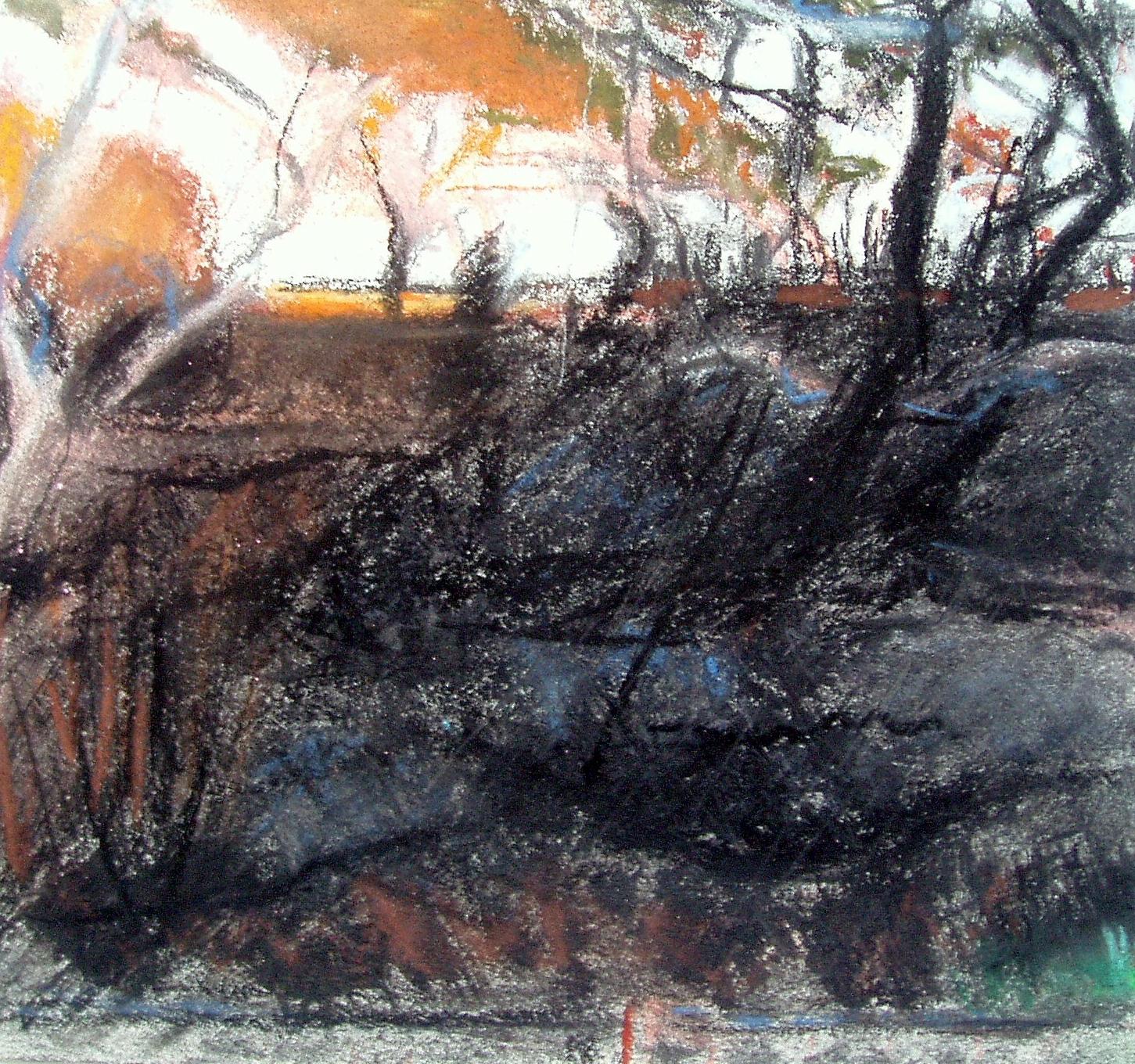 Scorched Earth, S E Australia