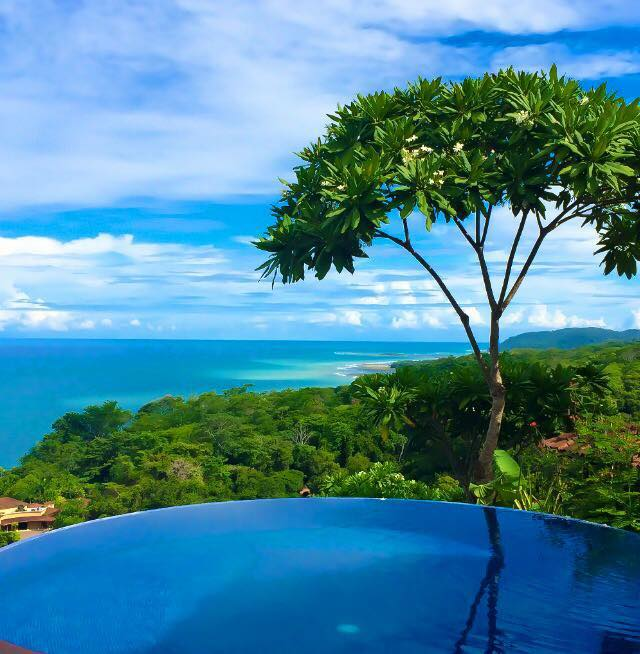 Your view everyday from the ozonated infinity pool.