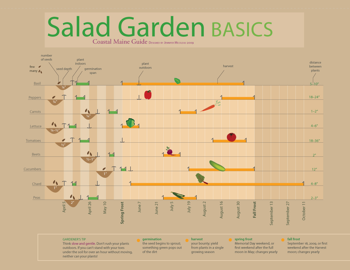 Timeline for Growing a Garden in Maine