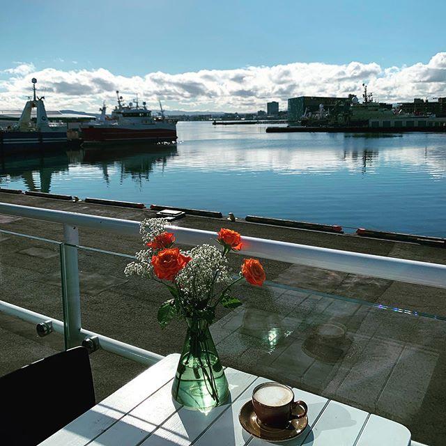 Miðvikudagur☀️ Opið 9-16 —Tandoori karfi -Heimagerð grísk píta með ljúffengu lambakjöti -Spinat lasagna með pestó (v) -Fiskisúpa Bergsson RE -Calamares, dumplings og chilli sósu -Grænmetis súpa (v) Með réttunum er nýbakað súrdeigsbrauð, salat og fjölbreytt girnileg salöt #veitingastaður #tandoorikarfi #ferskurfiskur #grískpíta #verönd #útsýni