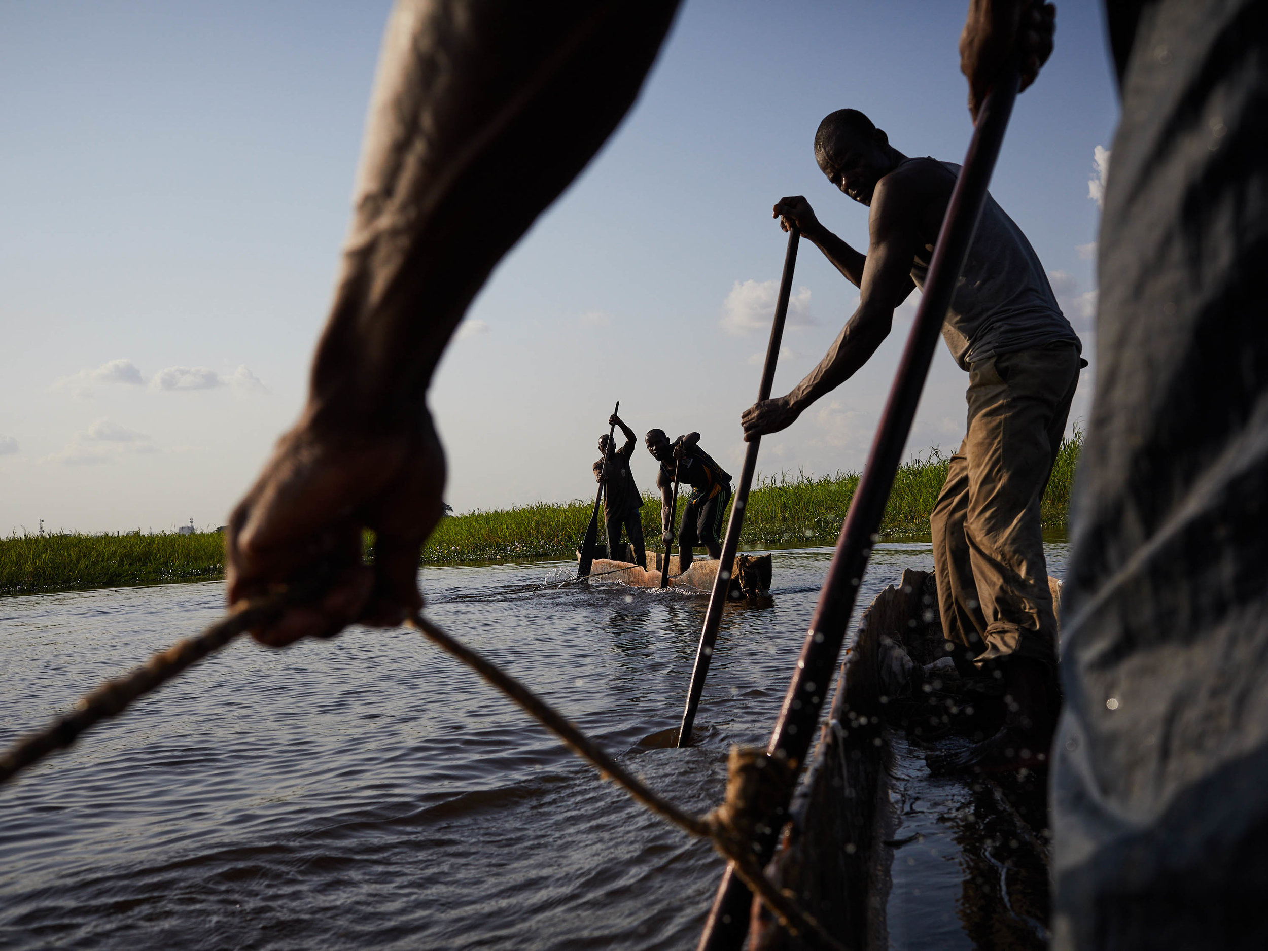 Fishing is one of the principal activities that brings humans into contact with snakes. Here, a group of fishermen led by Henry Bokuta prepare to haul their nets back into their pirogues, Congo River, Kinshasa.