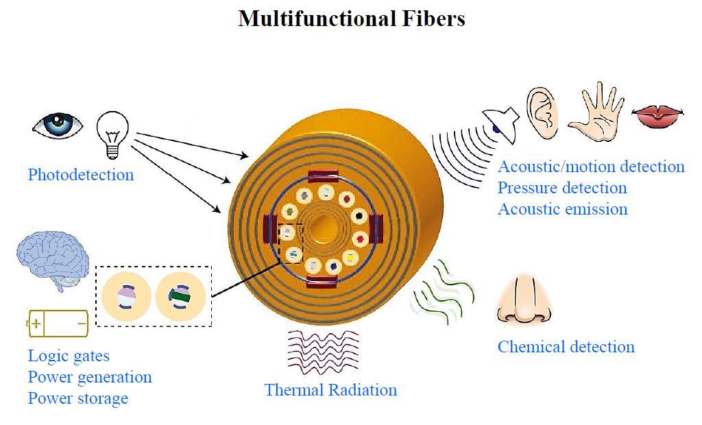 multifuncfiber.JPG