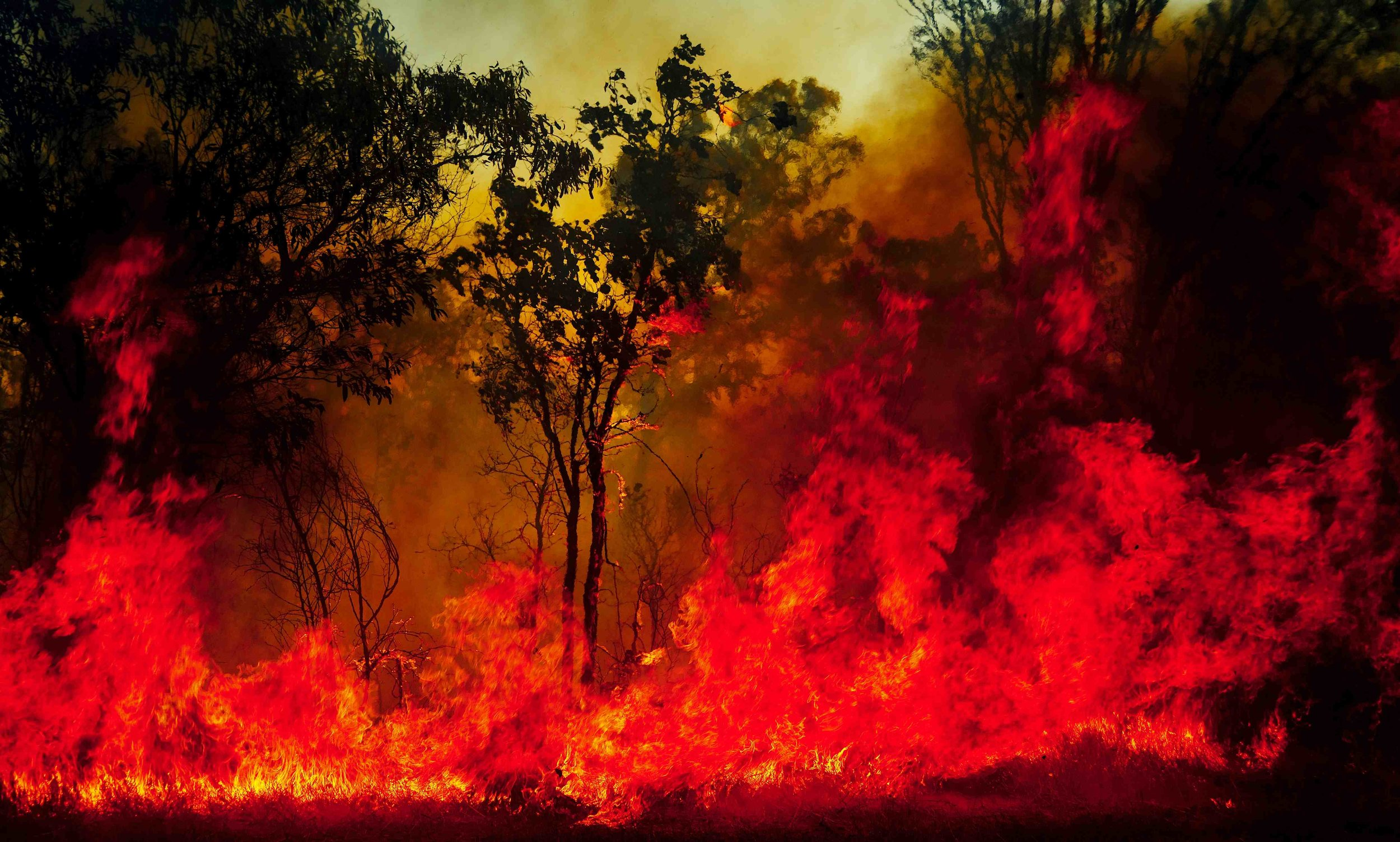 fire-007300.jpg