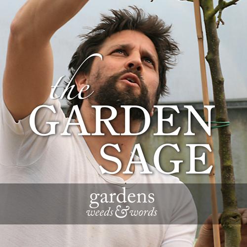 The Garden Sage