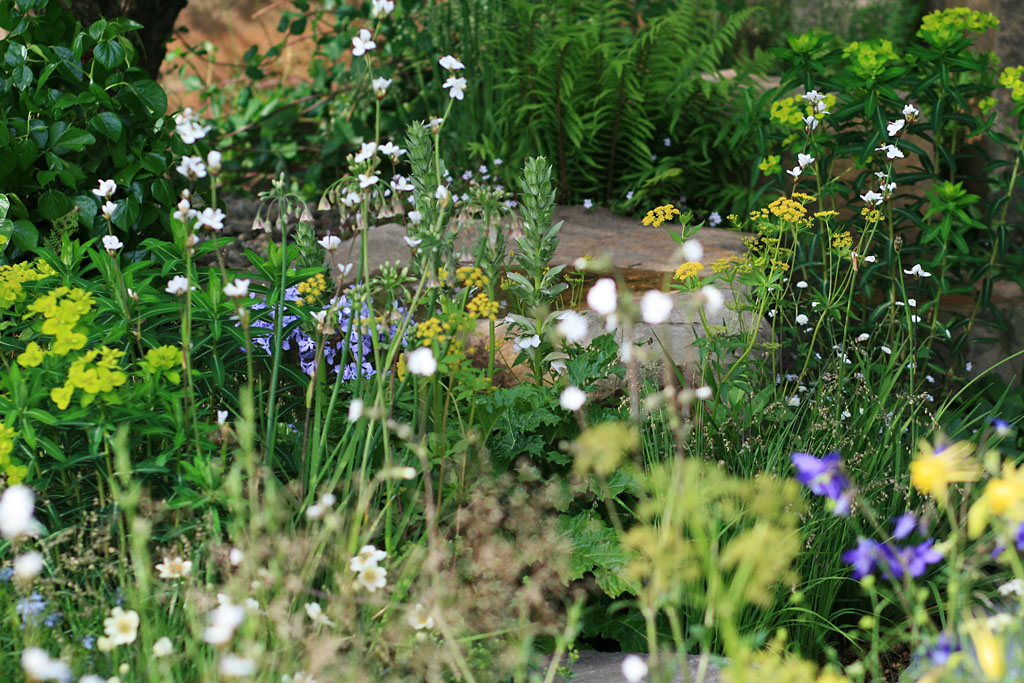 Detail from Cleve West's  M&G Garden , RHS Chelsea Flower Show 2016