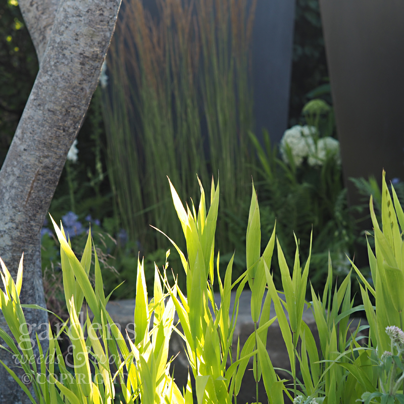 Detail from  Watch This Space  by Andy Sturgeon, RHS Hampton Court Flower Show 2017