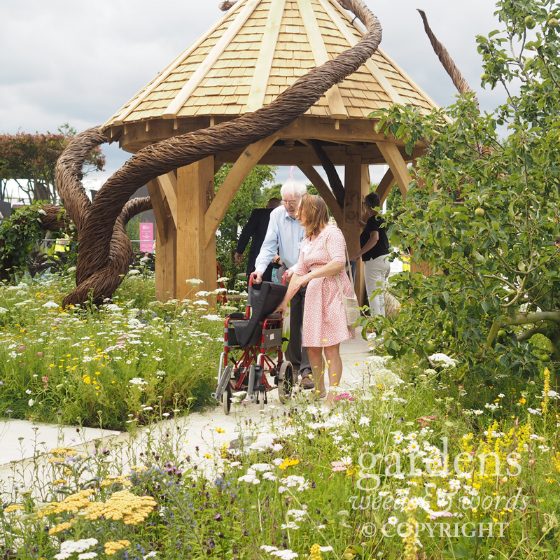 Detail from the  Blind Veterans UK: It's All About Community  garden   by Andrew Fisher Tomlinson and Dan Bowyer, RHS Hampton Court Flower Show 2017