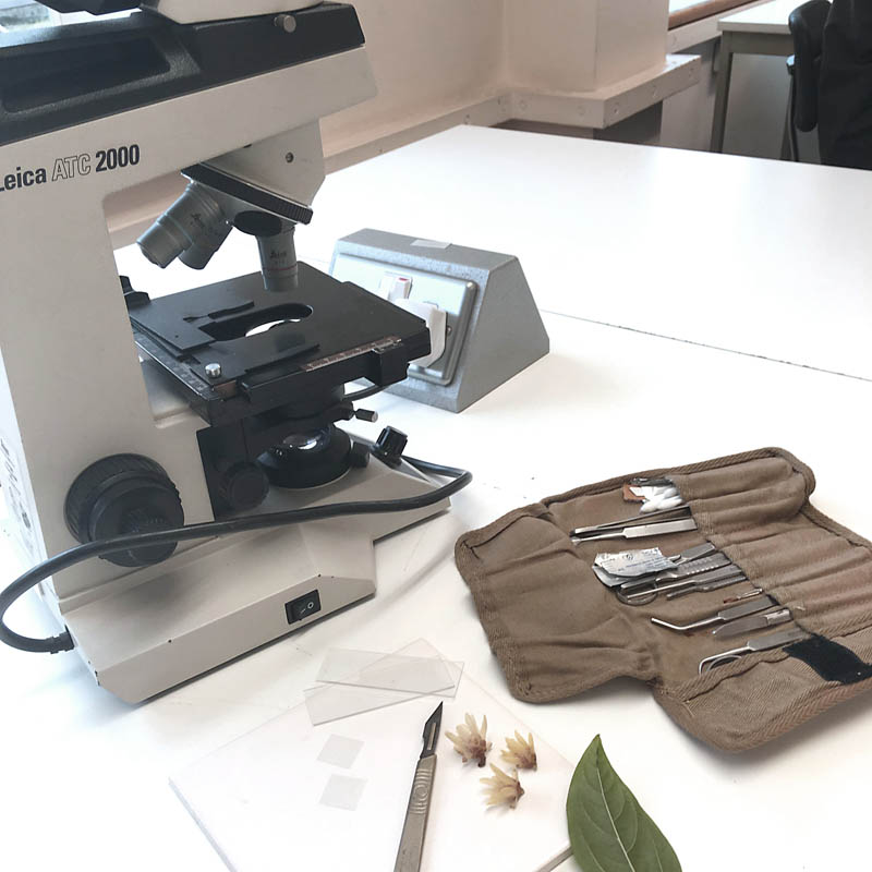 The kit at work in a Kew Dip botany lecture