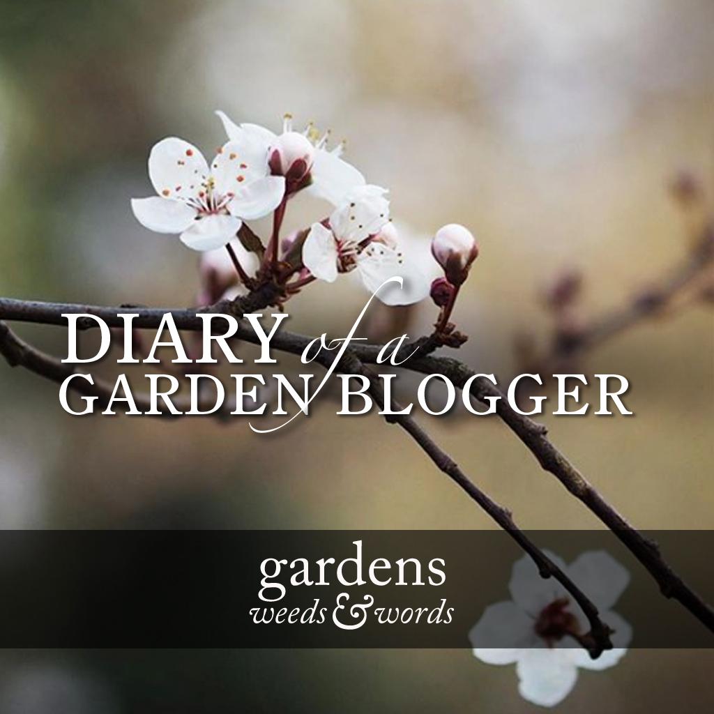 GWW_diary_march18_header.jpg