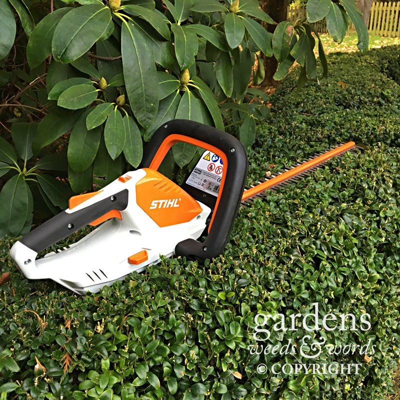 The Stihl HSA45 cordless hedgetrimmer from the Lithium Ion range for smaller gardens
