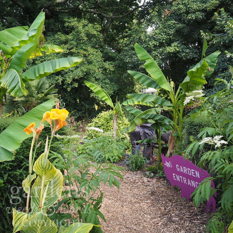 The newly beds at the entrance to the garden have a lush, tropical feel