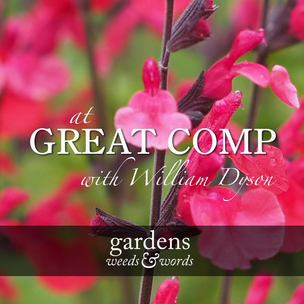 GWW_Great_Comp_header.jpg