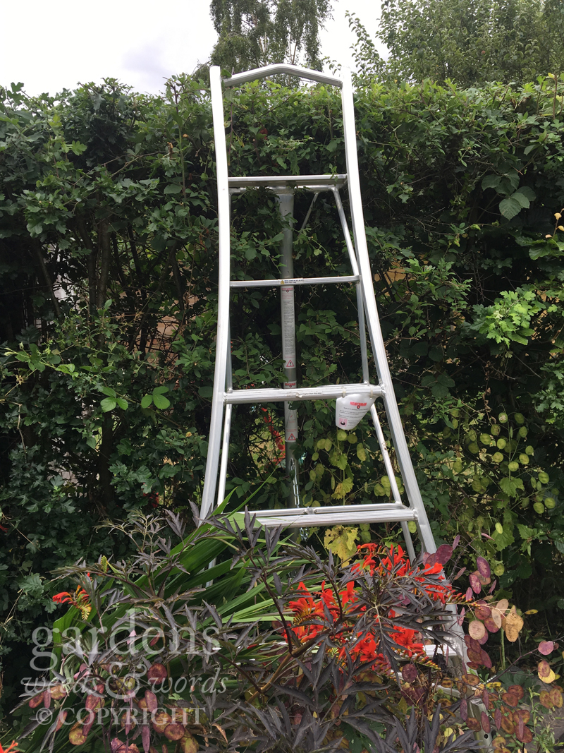 The tripod configuration makes it easy to get close to the hedge, even in restricted space at the back of a border.