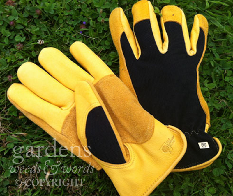 The  Winter Touch gloves from Gold Leaf