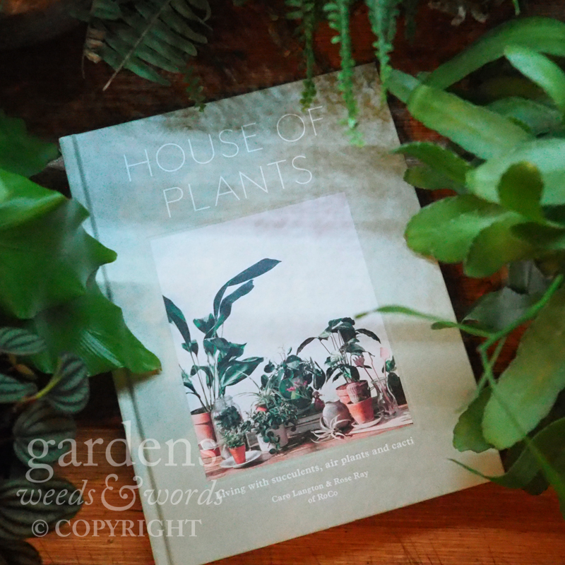 House of Plants , the first book from RoCo