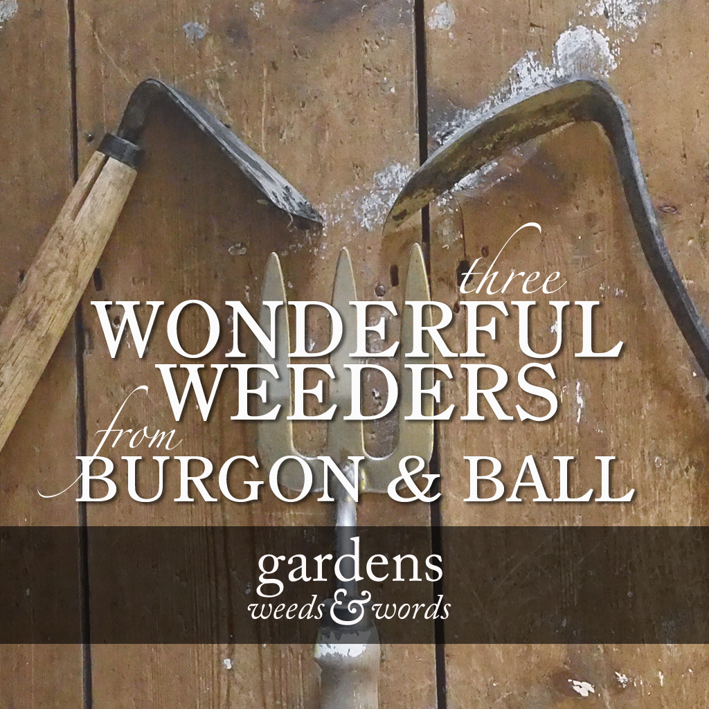 GWW-burgonandball-3weeders-header.jpg