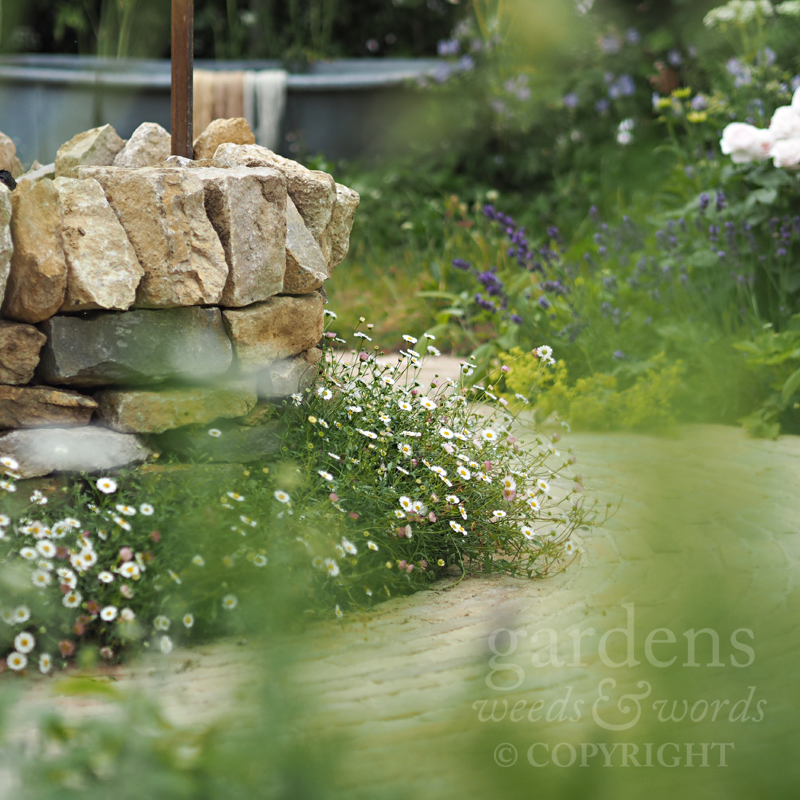 Detail of  The Naturecraft Garden  for Belvoir Fruit Farms, designed by Pollyanna Wilkinson, at the RHS Hampton Court Flower Show 2019