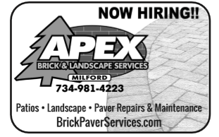 Apex-Now Hiring ad.PNG