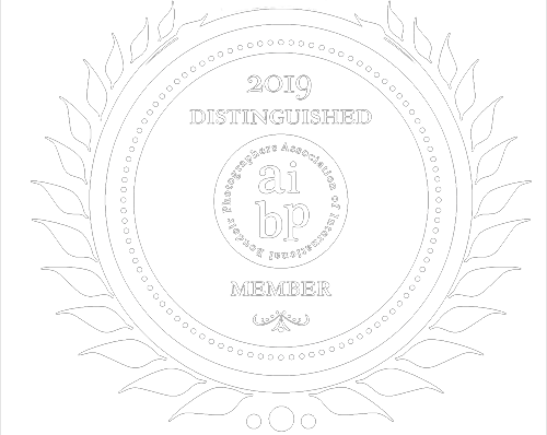 2019_Member_Badge_AIBP small white.png