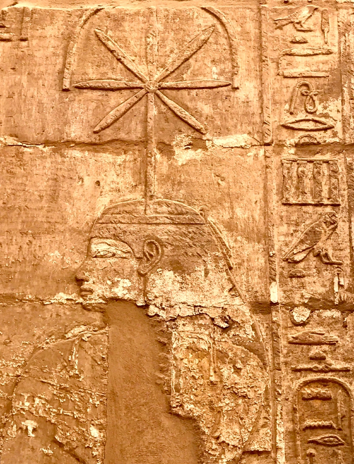 Seshat goddess of wisdom and writing
