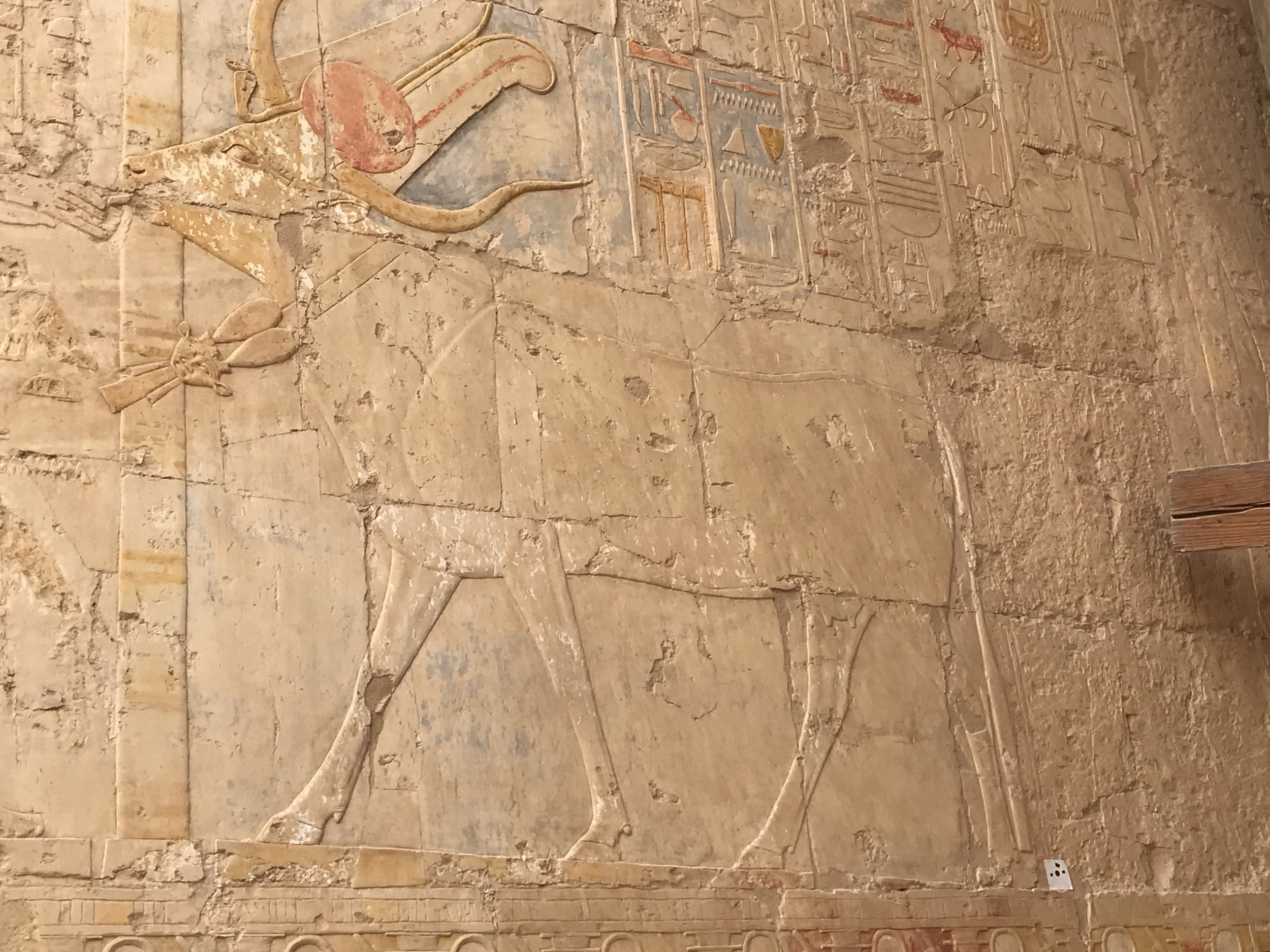 Goddess Hathor in her cow expression