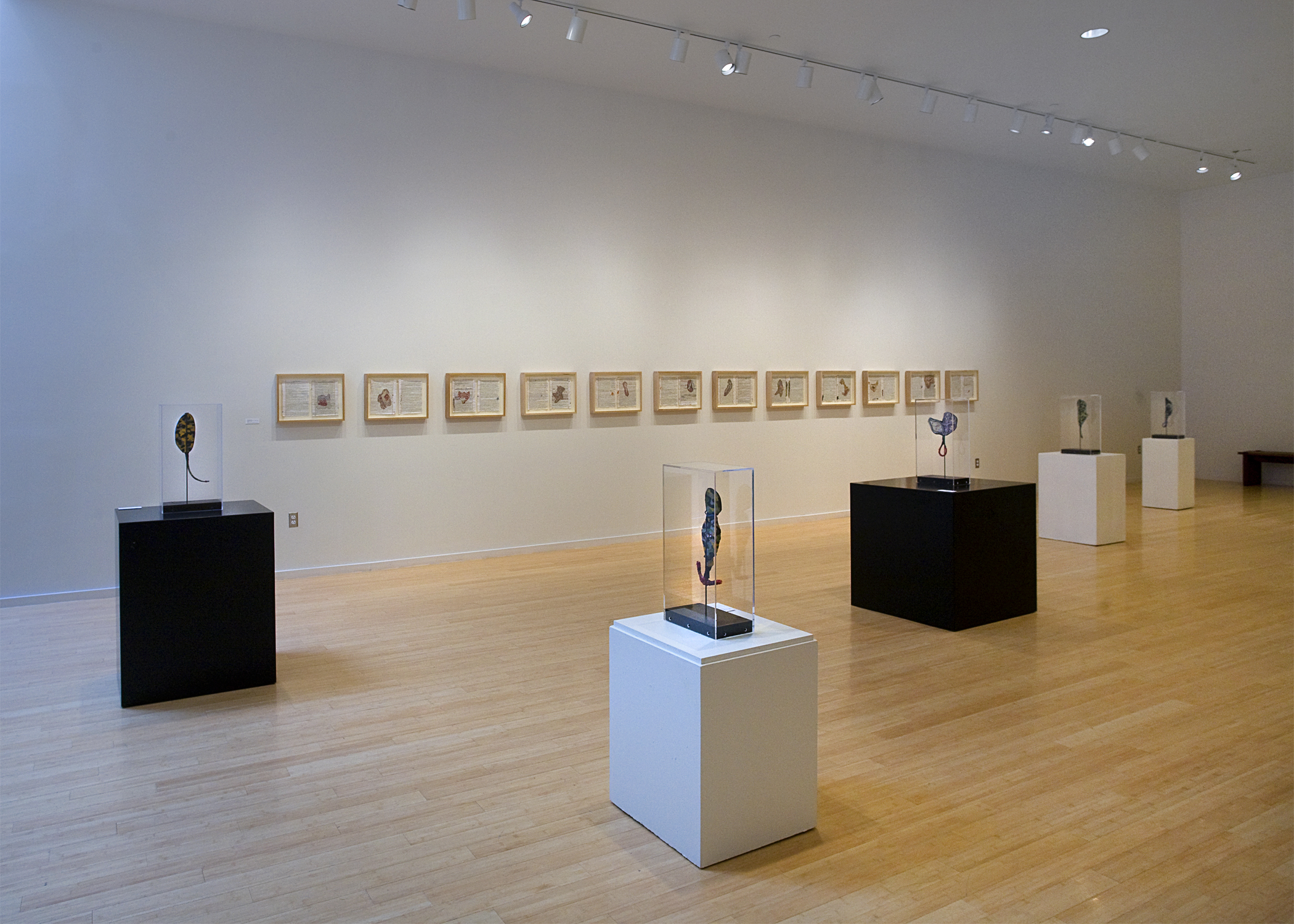 Rhyming The Lines, (installation view) mixed media, 12 framed works, 19 inches by 27 inches each, 2003-2010.