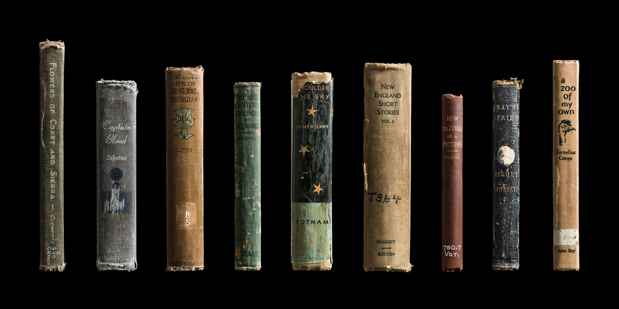 Mansfield_Expired_Spines_02.jpg