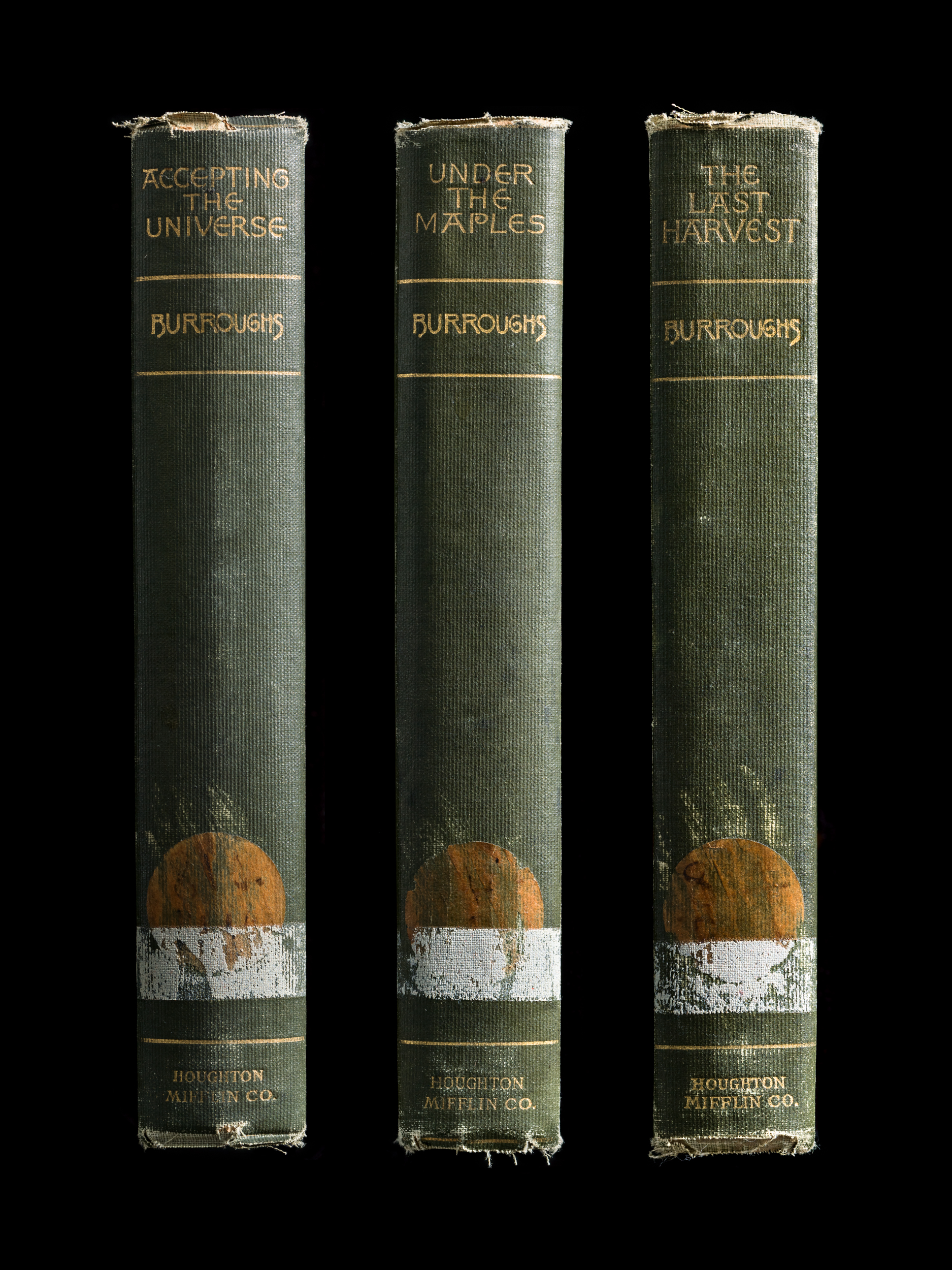 Mansfield_Expired_Spines_10.jpg