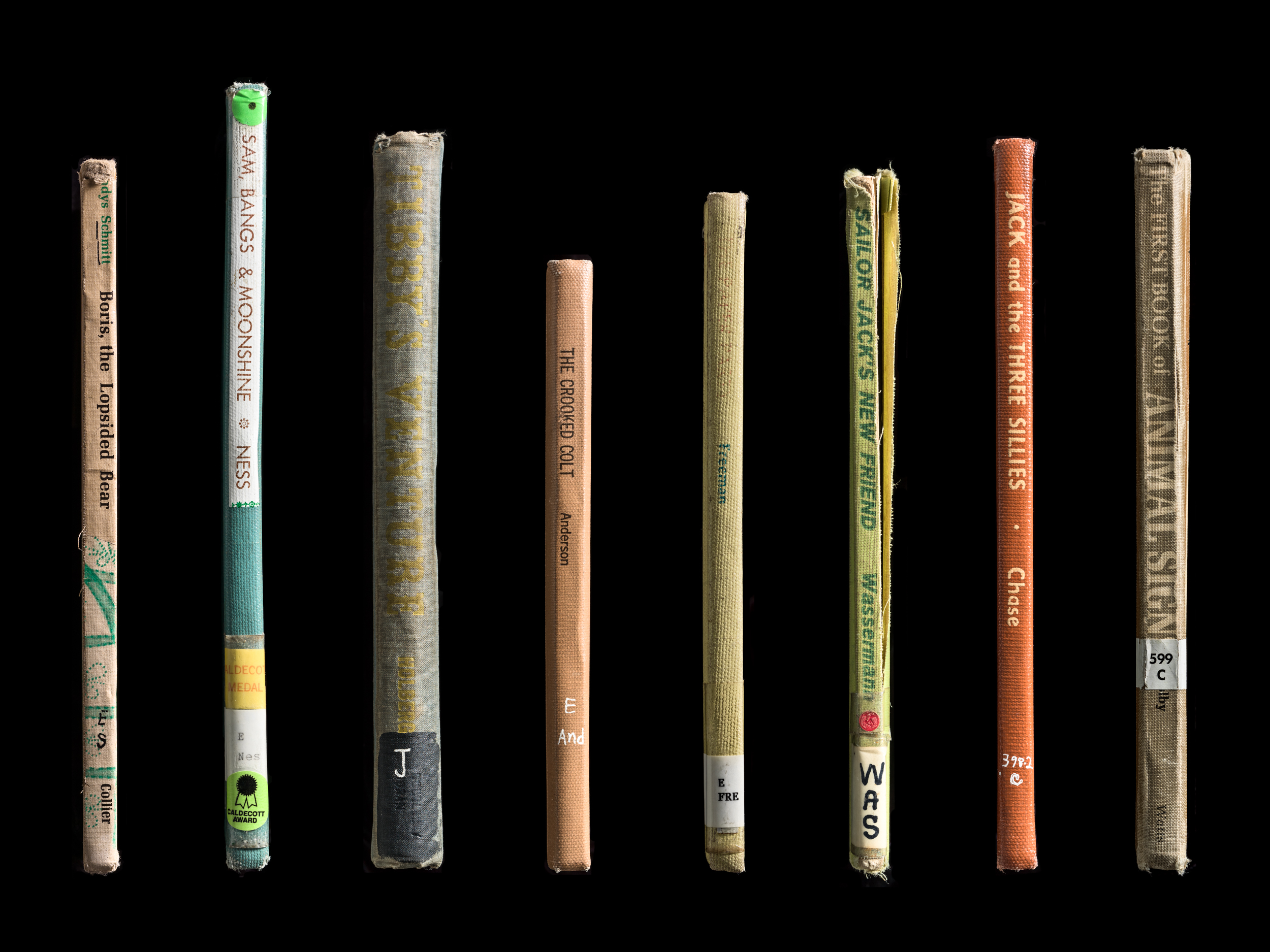 Mansfield_Expired_Spines_13.jpg
