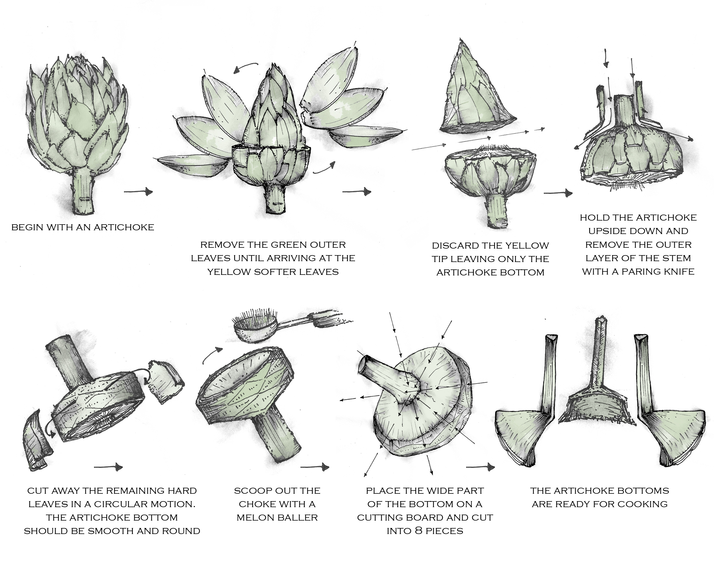 How to clean and turn and artichoke