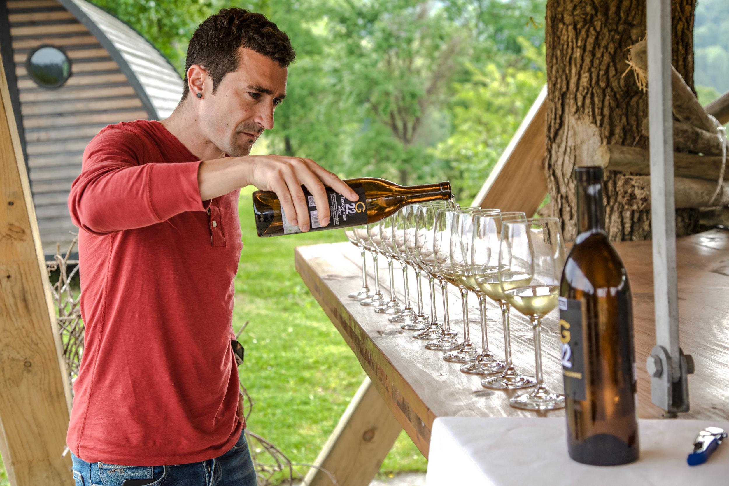 Txacoli in the vinyard