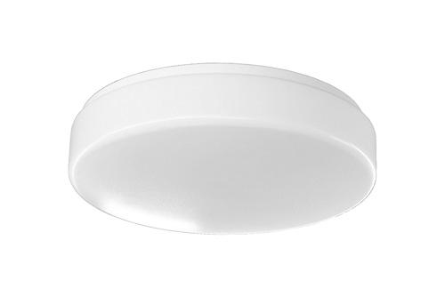 D1 / D2 LED