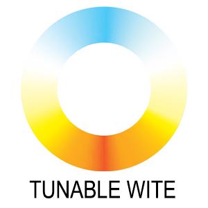 Tunable White.jpg