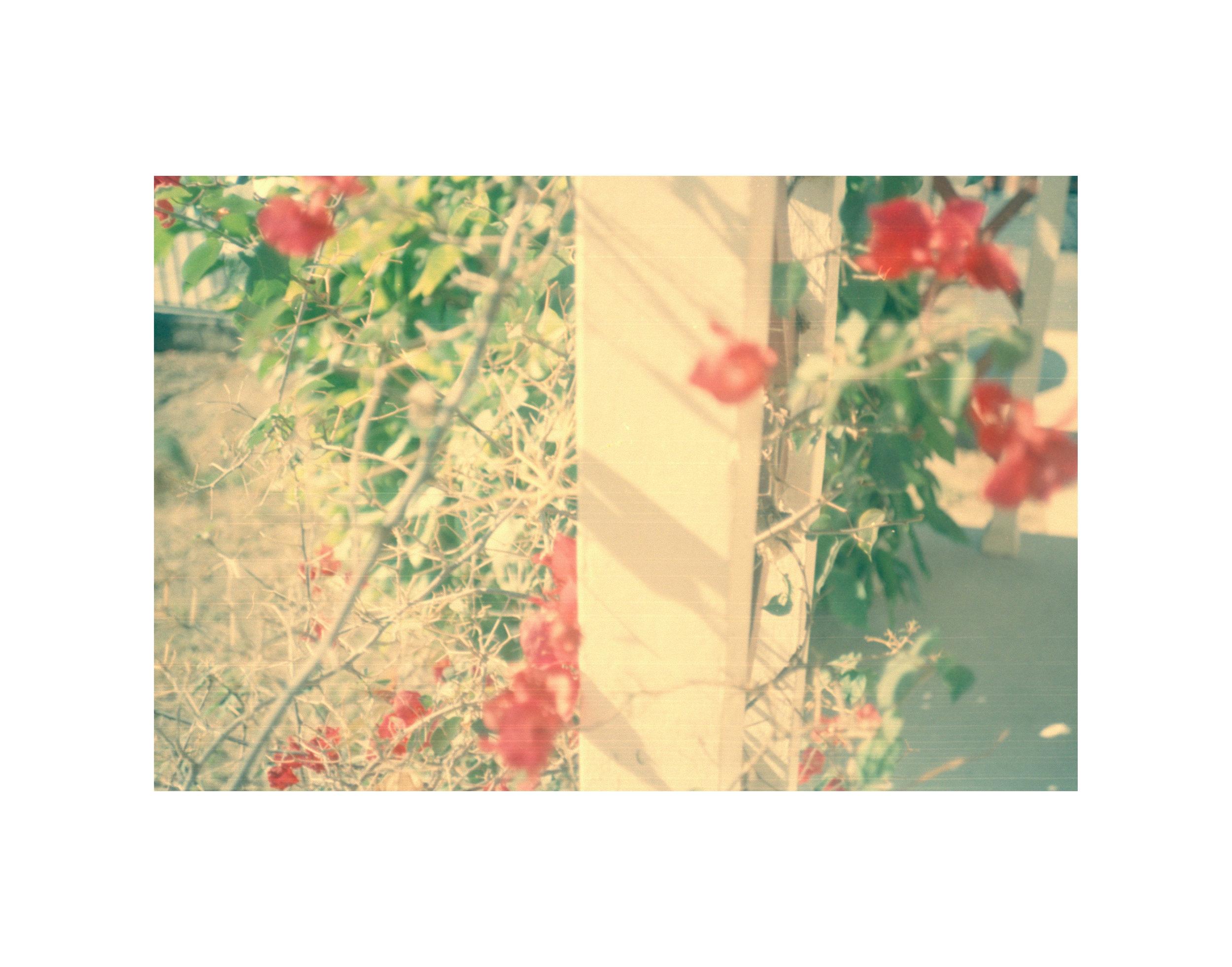 ItsNotYouItsMe-11x4-BACKGROUND-16.jpg