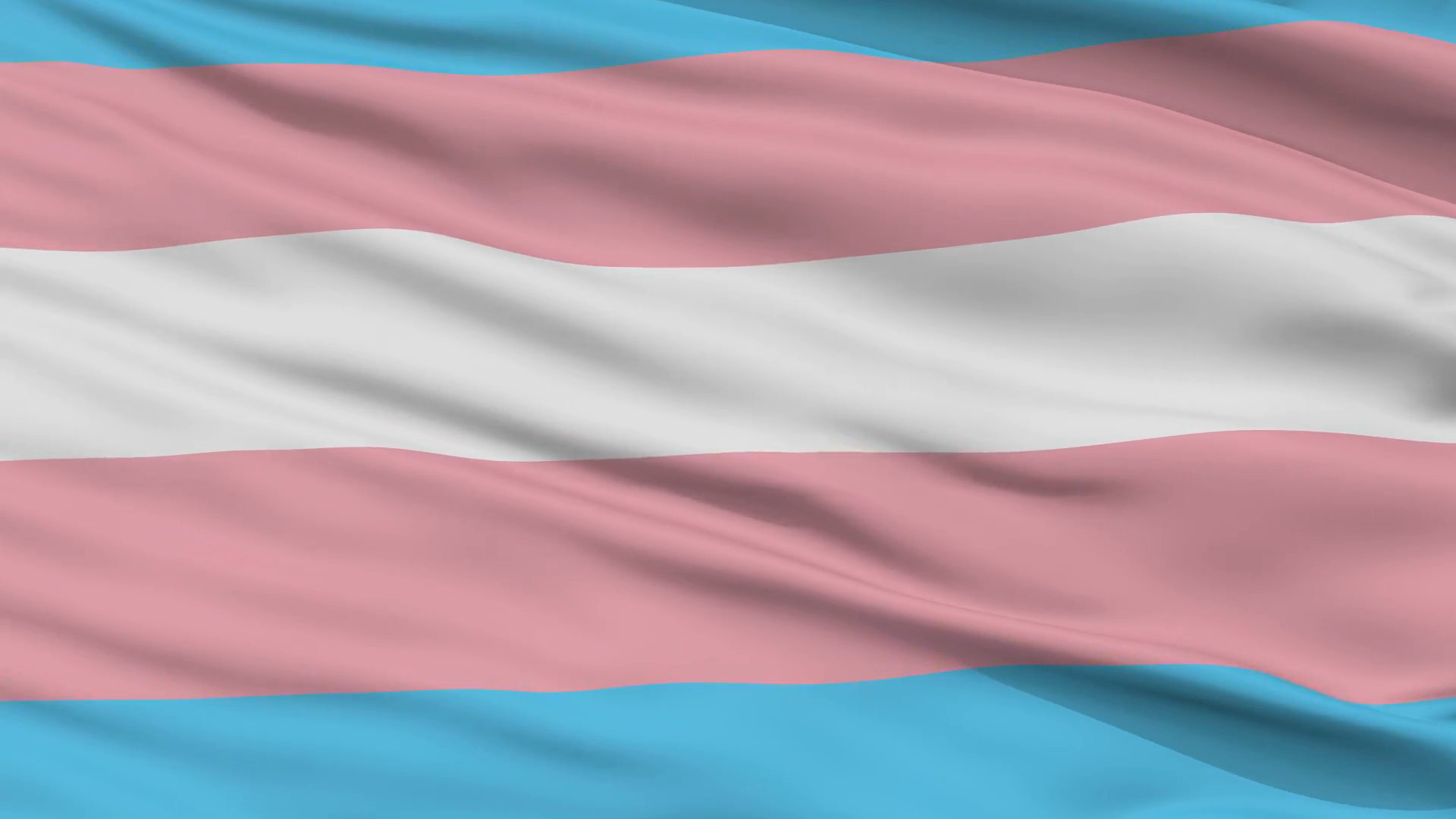 Trans Rights -