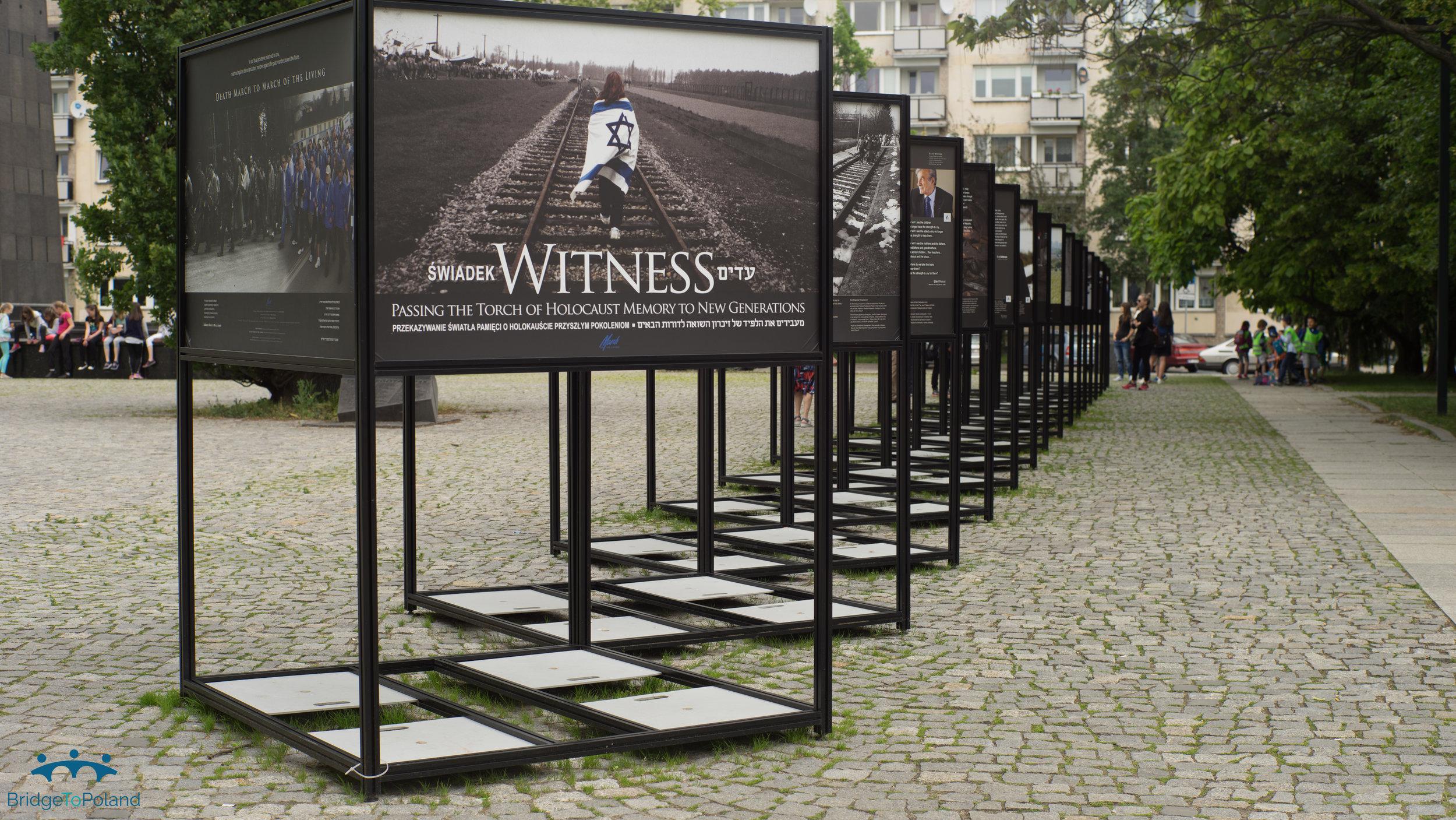 Witness POLIN.jpg
