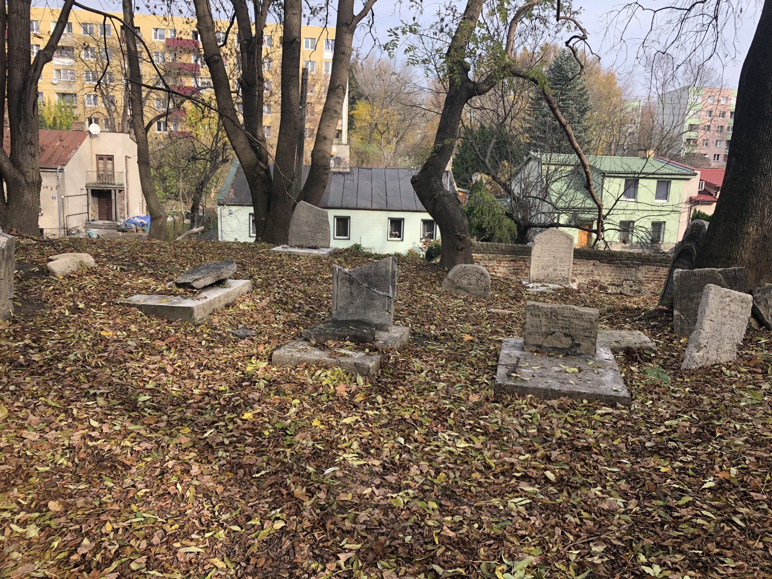 The Old Jewish Cemetery, Lublin, 2018.