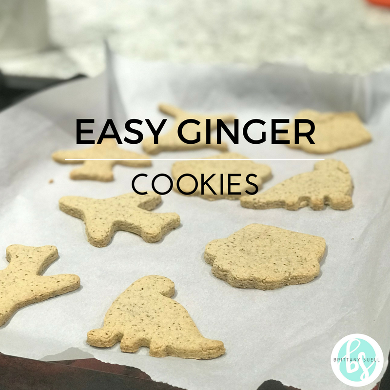 GINGER COOKIE- Gluten, Dairy, Egg, Sugar FREE! & So easy!